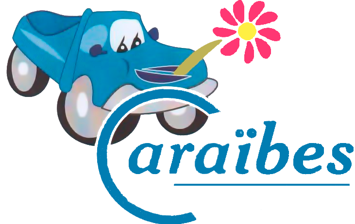 CARAIBES CLEANING